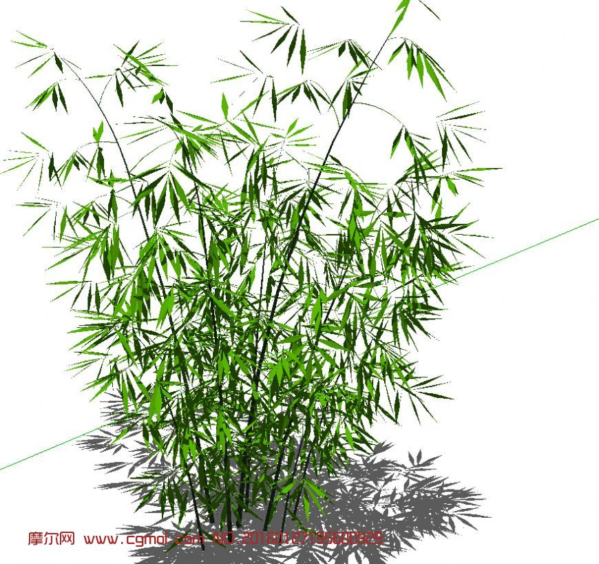 微信头像图片大全风景竹子
