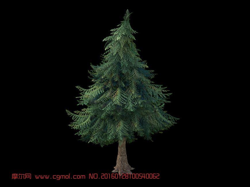 树木模型  标签:树松树 作品描述: 作者其他作品 上一个作品:    q版