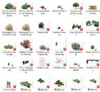 各种好看的2D树合skp格式合辑