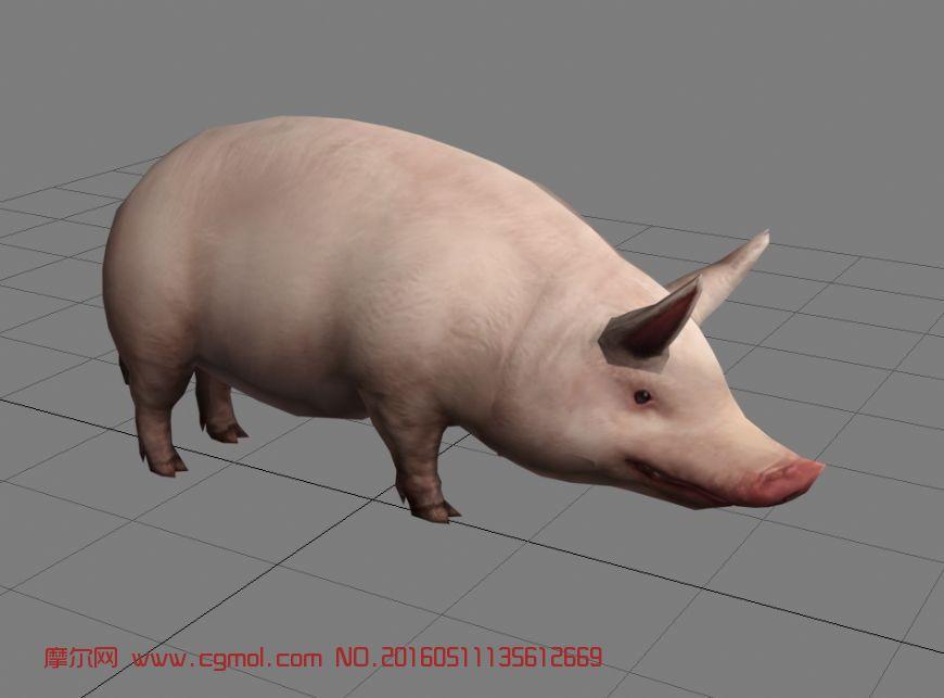 动物模型 哺乳动物  标签:动物猪游戏 作品描述: 作者其他作品 上一个