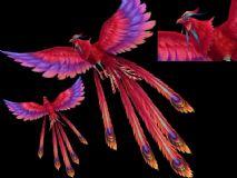 凤凰,神鸟