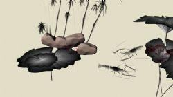 原创中国水墨画虾和荷叶等