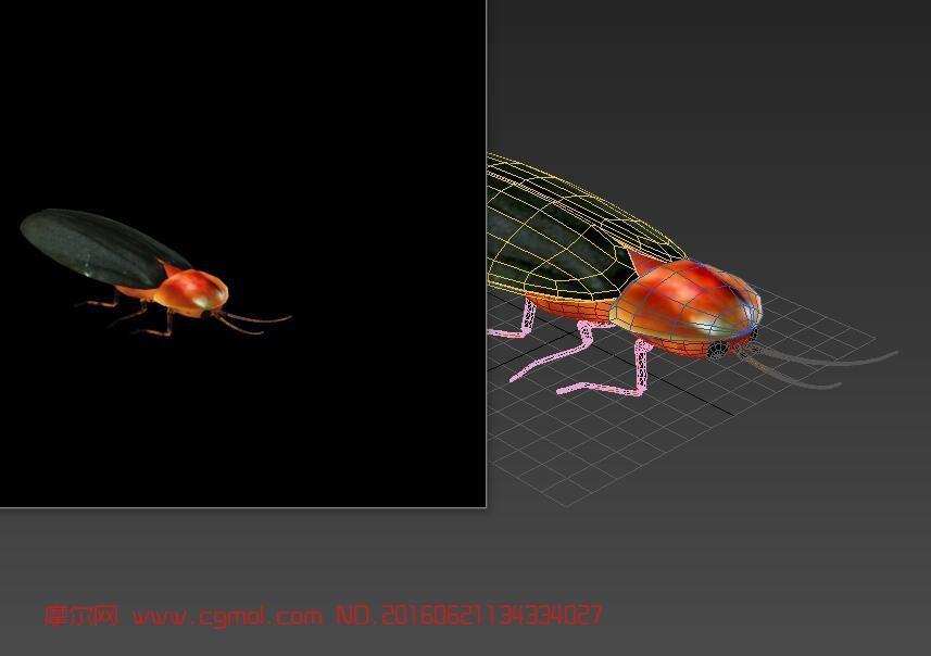 昆虫萤火虫,包含贴图,FBX格式