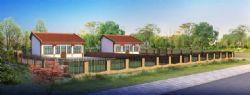民房,新农村建设规划效果(花草树木为后期效果)