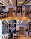 欧式室内家装整体