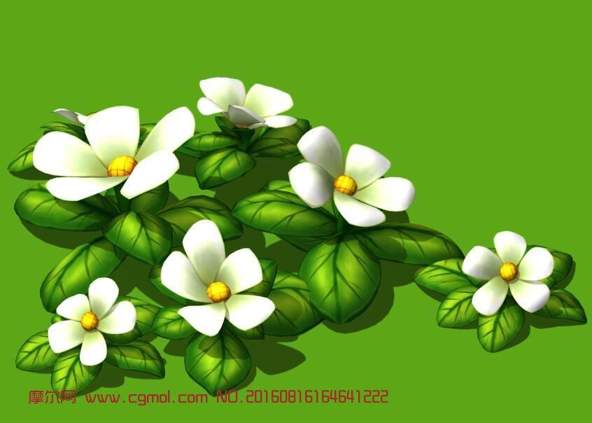 手绘小白花,茉莉植物3d模型