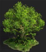 格林幻境中的参天大树3D模型(网盘下载)