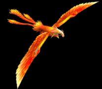 一���P凰的游�蚝�模
