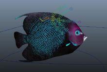 带绑定路径动画的海鱼maya模型