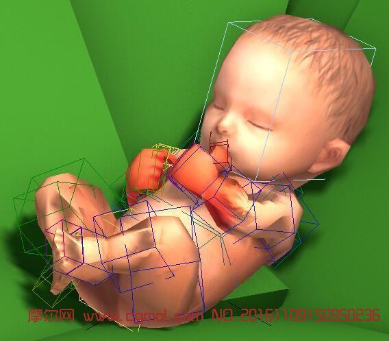 躺在树叶上吸允手指的婴儿