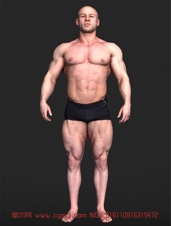 肌肉健身男3D模型,max,fbx格式都有(�W�P下�d)