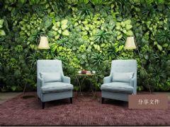生态绿植墙,休闲椅,绿植