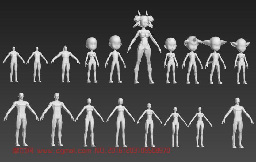 19款人体基础模型