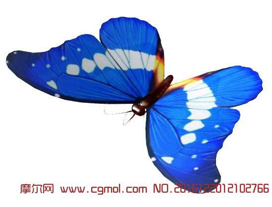 蓝蝴蝶,带动画