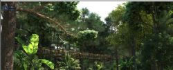 影视级别森景观,林中吊桥(网盘下载)