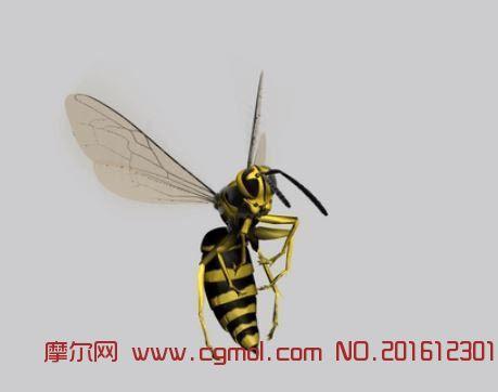 黄蜂飞动动画