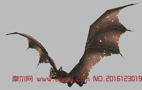 写实蝙蝠飞舞动画