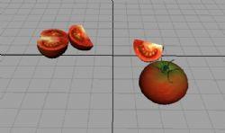 西红柿maya2009贴图动画