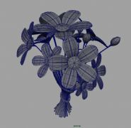 maya一束花模型