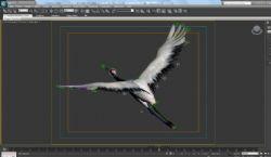 带骨骼绑定,飞行动画仙鹤模型