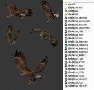 老鹰飞行带骨骼动画含各种动作