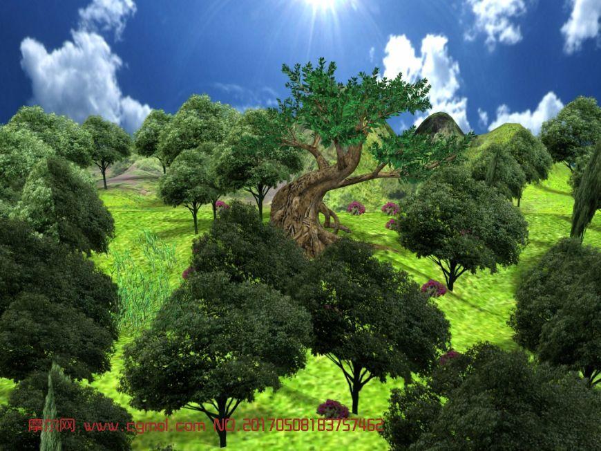大树高山+森林场景maya2012模型,贴图全