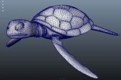 一个卡通版海龟