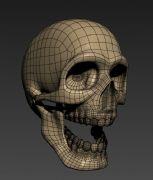 骷髅头max模型
