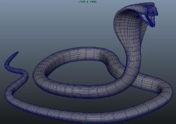 眼镜王蛇模型