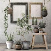 室内阳台盆栽装饰场景设计max模型