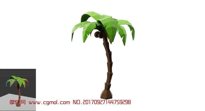 树  植物 热带树  椰子树