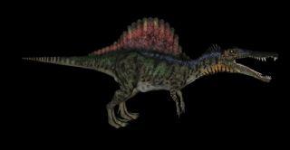 恐龙-长嘴龙c4d模型