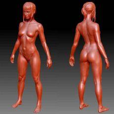 精细站姿女人体zbrush模型