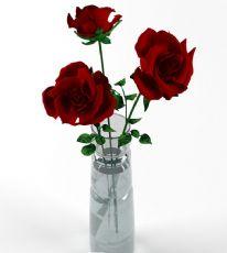 大朵玫瑰花瓶
