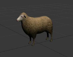 绵羊fbx模型