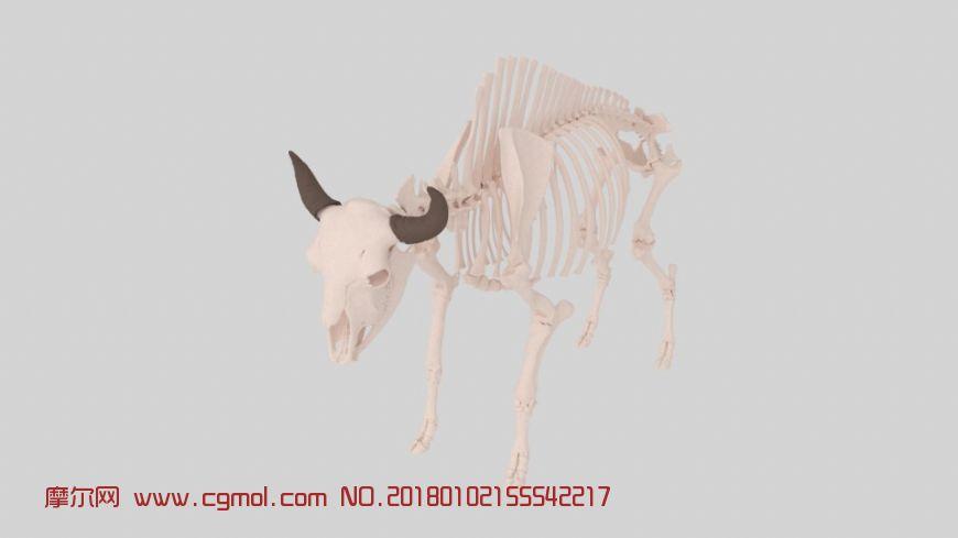 野牛骨骼高精度maya模型