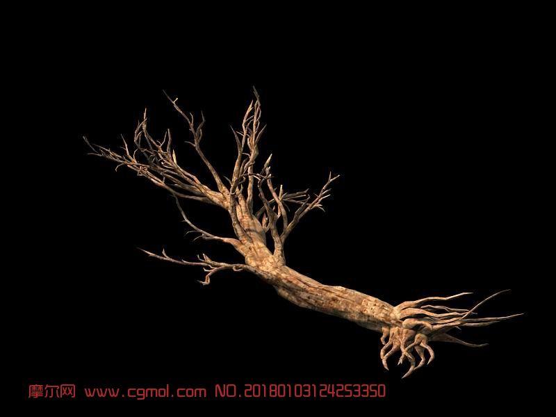 枯树,中高模