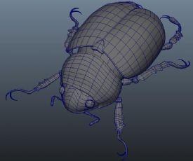 臭虫,甲壳虫,昆虫maya模型