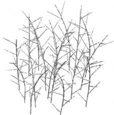 灌木丛雪景
