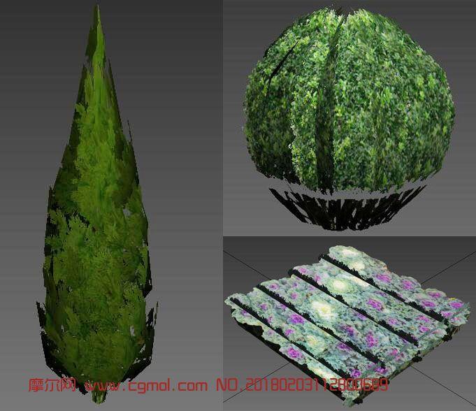 菜花冬青,球形冬青,锥形柏树max模型