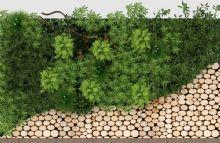 现代绿植背景墙饰圆木块木饼
