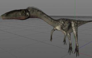 腔骨龙,鸟嘴龙C4D模型