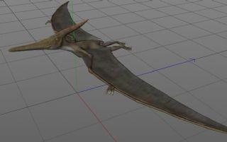 Pteranodon翼龙,蝙蝠龙C4D模型