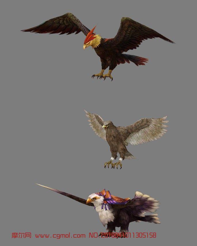 三只老鹰,鹰王max模型