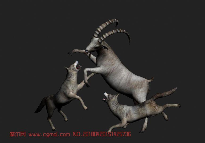 狼围攻羚羊max模型