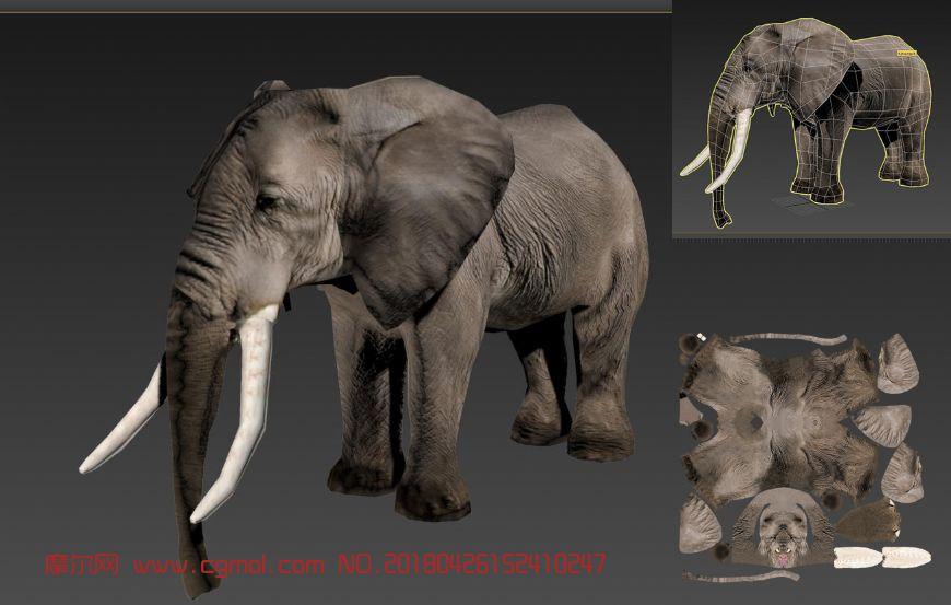 大象模型,猛犸象FBX模型