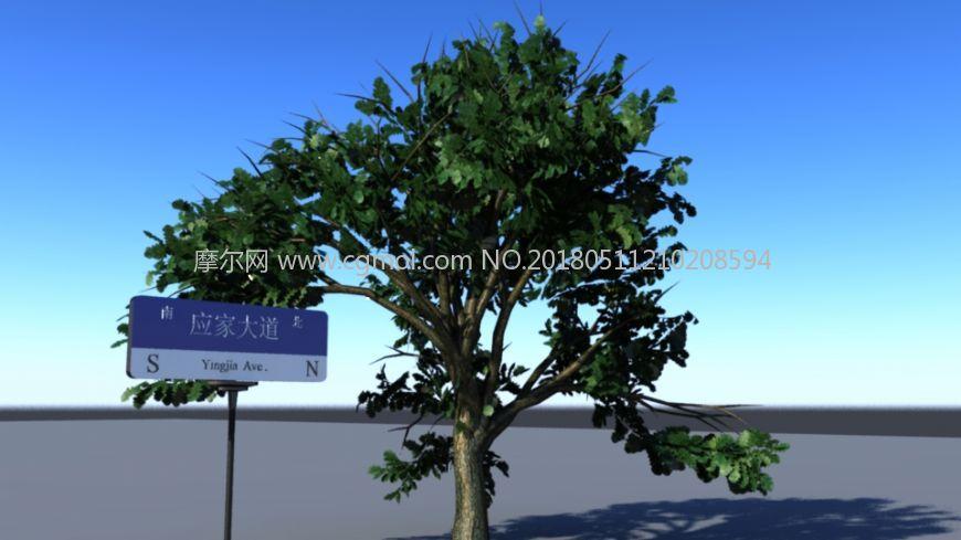 路牌+绿阴树