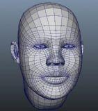 写实人头maya模型