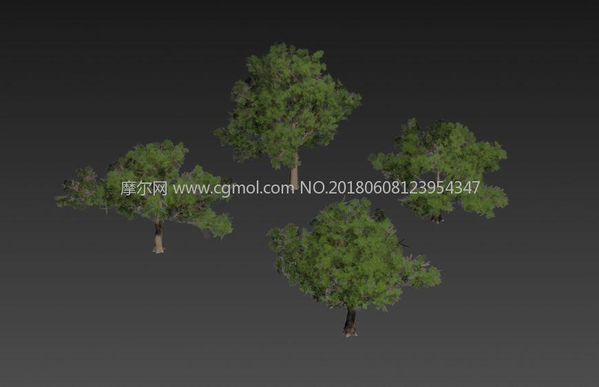 低面数的游戏植物树木