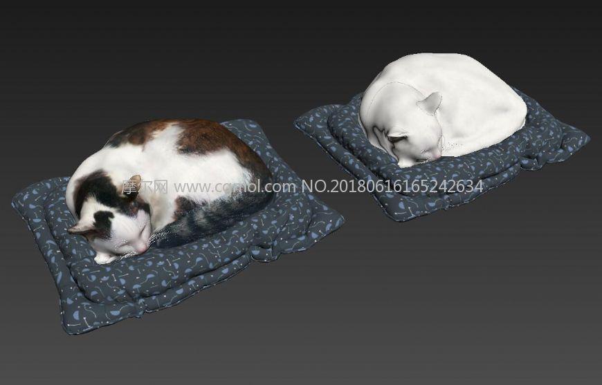 睡卧的喵咪,可爱的两只猫